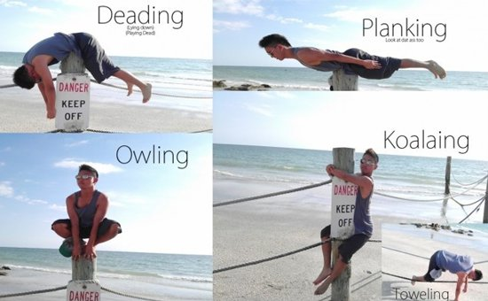 Viral Internet Crazes: Planking, Owling, Teapotting, Horsemanning and more. (6/6)